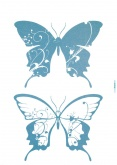 Freestyle matrica - Farfalle