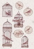 Freestyle matrica - Bird Cage