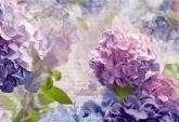 Flowers and Textures (Imagine 2) poszter - Otaksa