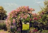 Flowers and Textures (Imagine 2) poszter - Rose Garden