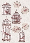 Freestyle matrica - Bird Cage